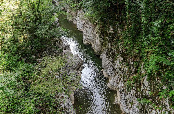 Краснодарский край с 1 августа условия пребывания_sochi national park