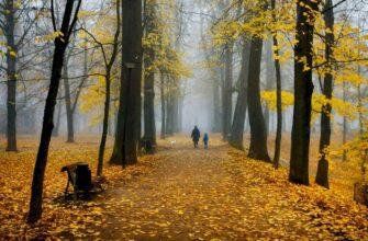 mozhno li v Estoniyu estonia misty park