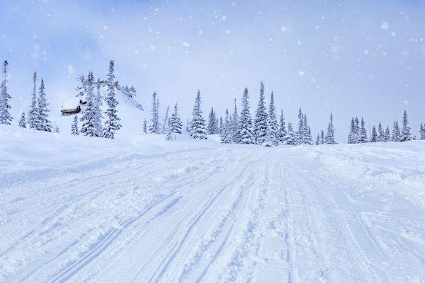 Туры Шерегеш из Москвы _ski slopes sheregesh